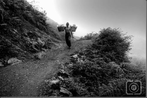 Terkadang cuaca di Puncak Gunung Ijen berubah cepat. Semula cerah mendadak gelap dan kabut pun turun dengan cepat menyelimuti langkah petambang turun menuju Pos Bunder.