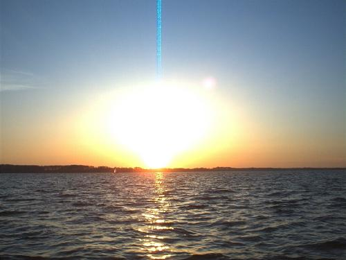 Image Result For Manfaat Sinar Matahari Pada Fotosintesis