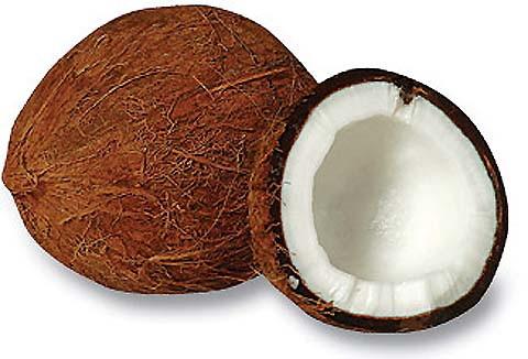 Daging kelapa diparut lembut lalu dicampur air. Parutan kelapa lalu diperas diambil santannyal. Kini tinggal ampas kelapa yang dimanfaatkan untuk penyerap ion logam berat.