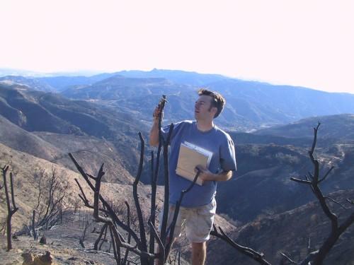 Phill Dennison mendatangi bekas lokasi kebakaran lahan di Pegunungan Rocky, AS.