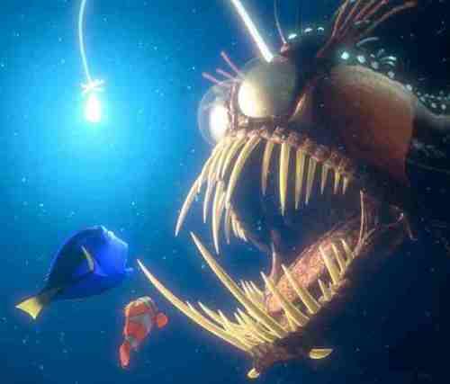sistem pencernaan laki-laki berdegenerasi, membuatnya tidak mampu makan secara mandiri, yang memerlukan dengan cepat menemukan anglerfish perempuan untuk mencegah kematiannya.