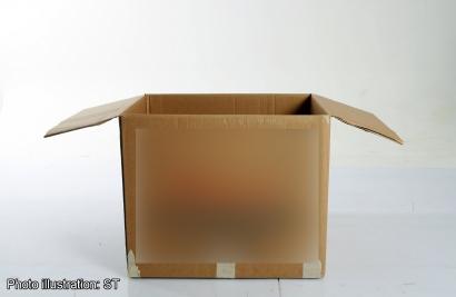 Ilustrasi kotak kardus berisi tulang tengkorak manusia yang dikirimkan kepada manajer agem real estat Prefectur Chiba, Jepang.