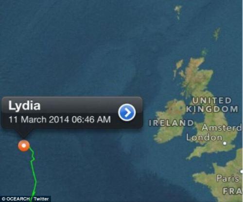 Putih besar sharked bernama Lydia telah melakukan perjalanan 313 mil dalam 72 jam terakhir.
