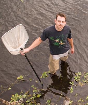 Jason Rohr saat tengah bekerja melakukan penelitian terhadap amfibi dari ancaman jamur patogen.