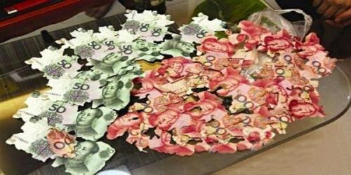 Serpihan uang kertas milik Cai Hou dimakan rayap setelah selama delapan tahun tak pernah ditengok.