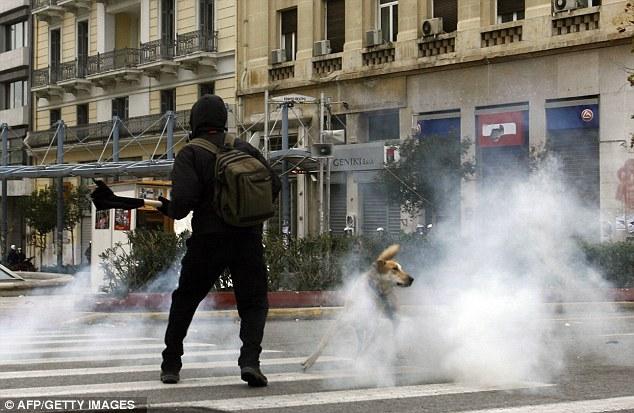 Anine penyebabnya: mutt pemberani menghindar awan gas air mata dengan pengunjuk rasa lain selama demonstrasi pendidikan di Athena pada 9 Januari 2009