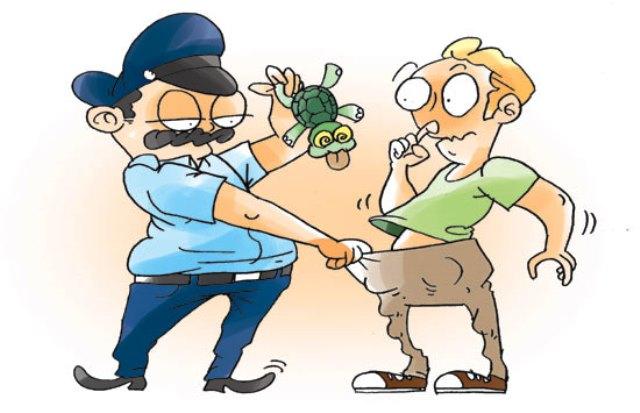 Ilustrasi saat Kai Hu ditangkap petugas perbatasan Kanada dan AS. Ilustrasi Bengkulu Express Com.