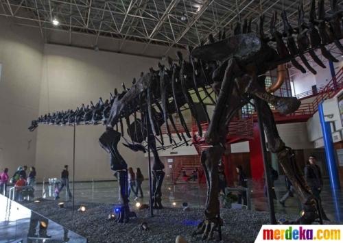 Pengunjung yang hadir di lokasi pameran Dinosaurus berusia 150 juta tahun di