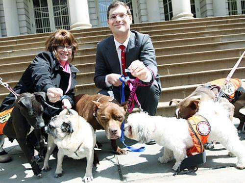 Micah Z. Kellner and Linda Rosenthal discuss their legislative proposal -- with some friends.