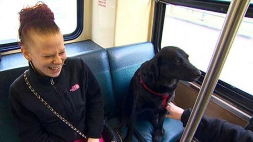 Terkadang Eclipse duduk di kursi belakang berdampingan dengan penumpang wanita yang merasa geli dengan kelakukan Eclipse.