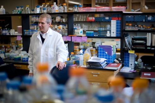 Prof Kim Lewis bekerja di laboratorim