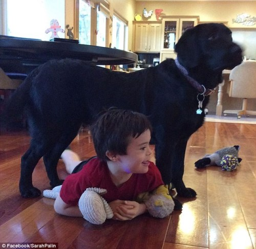 Sering saat ibunya memasak di dapur, Trig bermain bersama Peta. Trig membiarkan tubuhnya masuk kolong tubuh Peta anjing labrador milik ibunya.