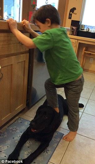 Karena tempat cuci piring tinggi terpaksa Trig menginjak punggung Peta.