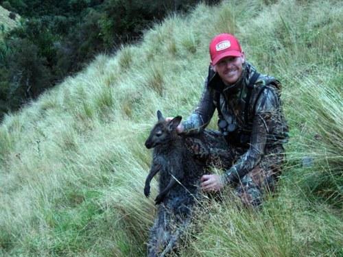 Sebelum dinyatakan hilang, Bella, kangguru kecil sering diajak bermain pemiliknya, Joey Strom ke lembah sekitar tempat tinggalnya.