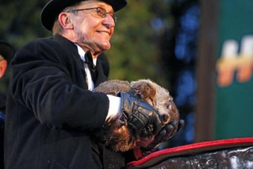 Punxsutawney Phil mengambil gigitan dari tangan bersarung dari handler Ron Ploucha selama perayaan 129 dari Groundhog Day di Knob Gobbler di Punxsutawney, Pa. Senin, 2 Februari, 2015.