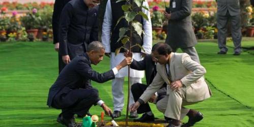 Inilah momen yang tertangkap kamera ketika Presiden AS Barack Obama bersama Presiden India Mohandas K Gandhi menanam pohon peepal atau pohon bodhi ketika Obama berada di New Delhi untuk memperingati hari kemerdekaan India.