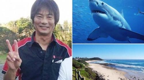 Tadashi Nakahara tewas diserang hiu di pantai Shelley, Balina, New South Wales, Senin (9/2/2015)