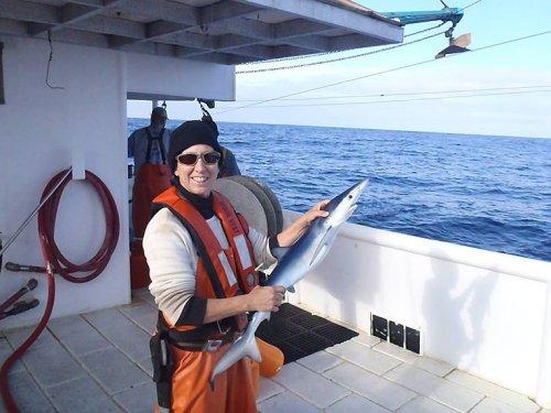 Dr Lisa Natanson, peneliti hiu saat memperlihatkan temuan hiu putih besar beberapa waktu lalu.
