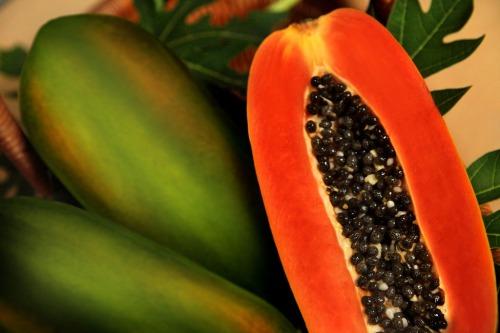 Buah Pepaya dapat membantu untuk meningkatkan sistem kekebalan tubuh karena buah ini mengandung Beta-Karoten. Beta-Karoten dibutuhkan agar tubuh dapat berfungsi dengan baik serta meningkatkan sistem kekebalan tubuh kalian ladies.