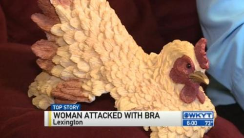 Keramik ayam jago yang dipakai Patricia Leece mempertahankan diri dari serangan Ashley Sies.
