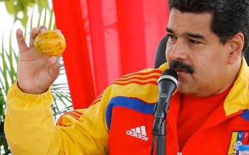 Nicolas Maduro memegang mangga dilemparkan oleh Marleny Foto Olivo : www.nicolasmaduro.org.ve