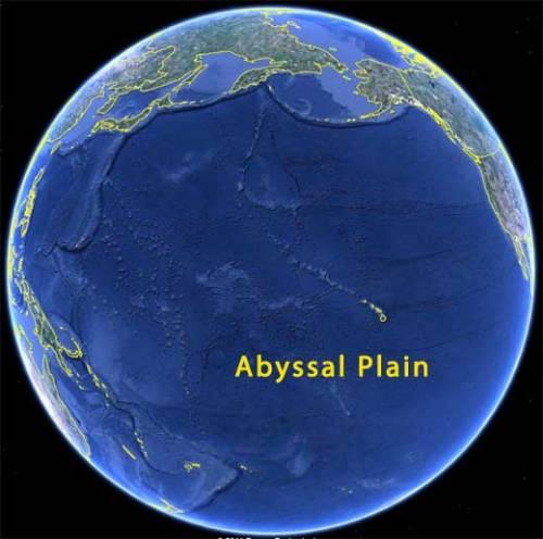 Dataran dasar laut Samudra Pasifik yang begitu dalam, gelap karena sinar matahari tak mampu menembus kedalaman hingga dataran dasar samudra.