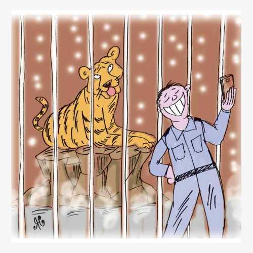 harimau dlm kandang