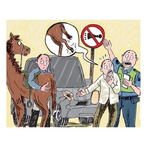 Ilustrasi Handining, Lu pemilik mobil didenda polisi Nanchang. Mobilnya rusak kena tendang kuda milik Cui.