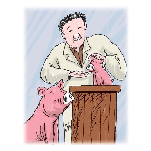 Melalui rekayasa gen, babi normal berat tubuhnya diubah menjadi babi mungil. Ilustrasi Handining.