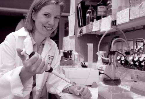 Amy bertaruh , PhD , adalah penerima W.M. Keck Foundation penghargaan bawah nya Young Scholars Distinguished di Program Medical Research .