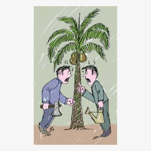 parlemen india ribut soal phn kelapa.