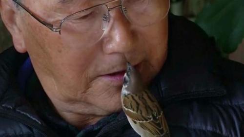 Yoshino Fujino mencintai memiliki sedikit satu di sekitar rumah . ( Reuters )