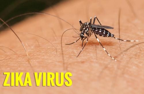 Virus Zika pertama kali diidentifikasi di Uganda pada tahun 1947 pada monyet rhesus . Sejak itu, perlahan-lahan bergerak melintasi Afrika ke Asia , menyebar dengan dua spesies nyamuk , Aedes aegypti terutama dan Aedes albopictus . nyamuk ini juga dapat menyebar demam berdarah , chikungunya , atau demam kuning . Mereka didistribusikan secara luas di seluruh Amerika Utara dan Selatan dan Karibia di iklim tropis dan sub - tropis . The albopictus juga ditemukan di iklim sedang , termasuk bagian timur AS .