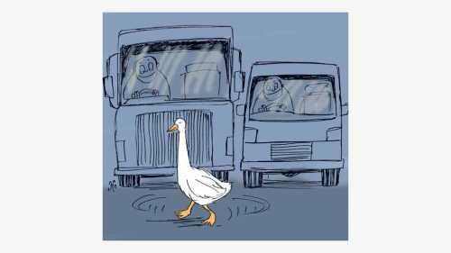 Ilustrasi Handining, angsa putih jalan santai menyeberang jalan, semua kendaraan ikut berhenti memberi jalan agar angsa tiba di seberang jalan.