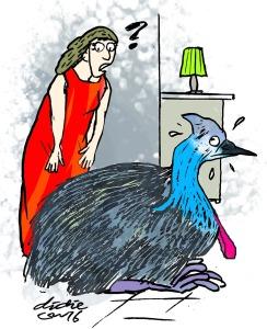 Peanut, seekor burung kasuari liar senang bermain di rumah Sue dan Peter Leach. Ilustrasi : Didie SW.