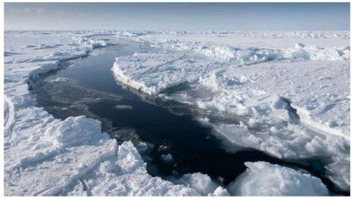 Para ilmuwan percaya bahwa cuaca panas yang tidak biasa di Alaska dan Rusia berpengaruh terhadap berkurangnya lapisan es. Peneliti masih akan mengumpulkan data rerata bulanan, yang dipercaya bisa menjadi indikator lebih baik untuk melihat dampak perubahan iklim. Musim dingin tahun ini merupakan rekor terendah luas lapisan es Laut Artik yang pernah tercatat.
