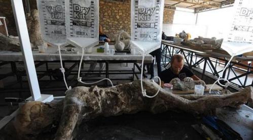 Restorasi jasad korban Pompeii yang menjadi mumi (AFP)
