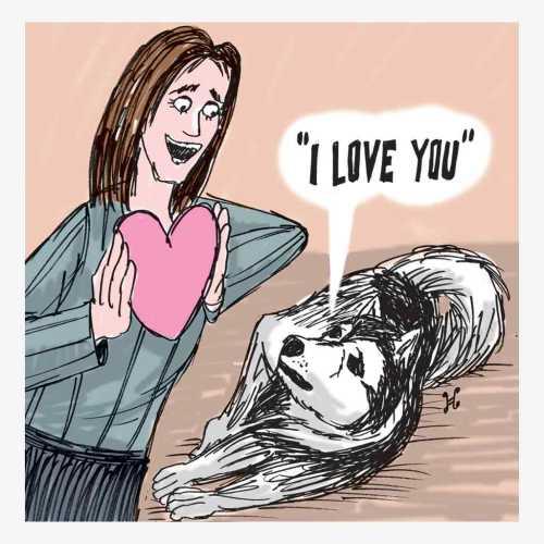 anjing i love you