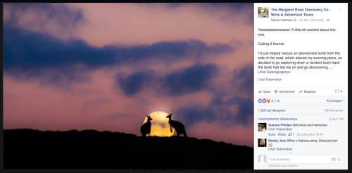 Dua kangguru sedang bercinta di atas bukit dengan latar belakang bulan bulat penuh.