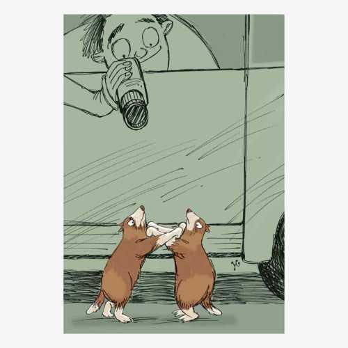 Dua marmut berkelahi menjadi tontonan menarik untuk diabadikan dalam foto. Ilustrasi : Jitet.