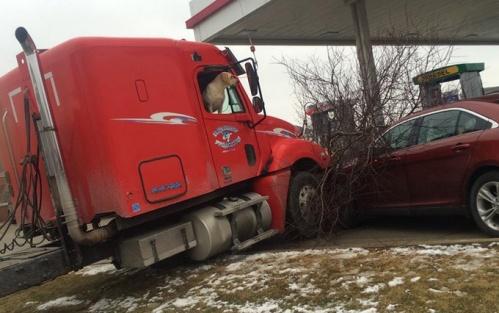 Pengemudi truk meninggalkan truk dalam kondisi mesin hidup, anjing Labrador miliknya mencoba menarik tuas persneling sehingga truk berjalan tanpa arah dan menabrak pohon dan mobil.