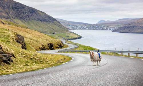 domba saya yang besar untuk menangkap trek dan jalan dari Kepulauan Faroe, tetapi untuk menutupi jalan Faroe menyapu besar dan seluruh lanskap nafas-mengambil, kita perlu Google untuk datang dan peta mereka. - Lihat lebih lanjut di: