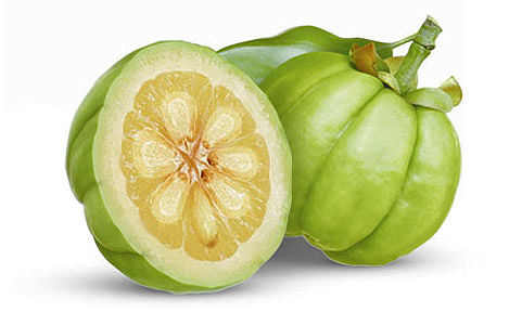 Garcinia Cambogia also known as Gummi-Gutta