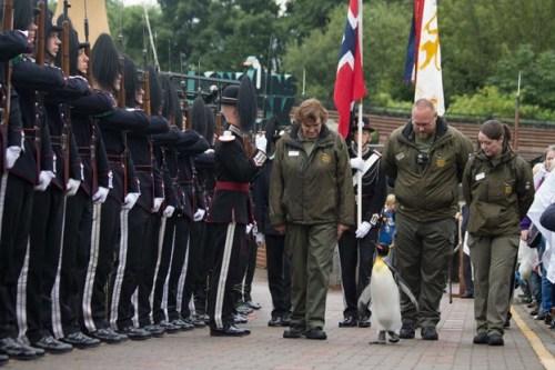 Raja Norwegia Pengawal melakukan kunjungan yang sangat istimewa untuk RZSS Edinburgh Zoo untuk memberikan suatu kehormatan yang unik pada warga raja penguin kami Sir Nils Olav .