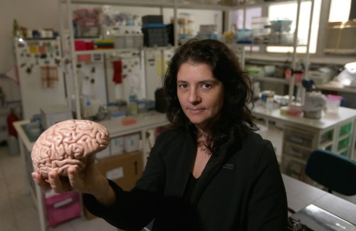 Suzana Herculano, ahli neurosains Universitas Vanderbilt. AS.