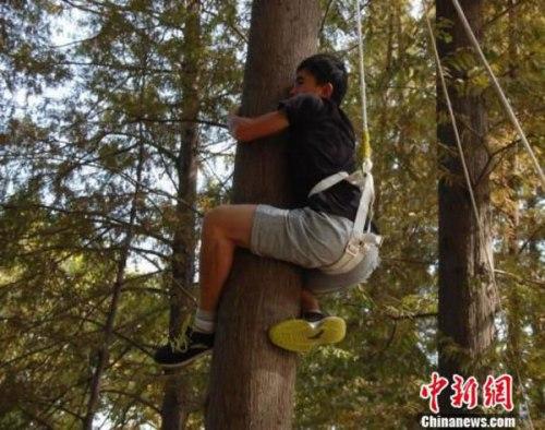 Seorang peserta memanjat di pohon selama seleksi. [Foto / chinanews.com