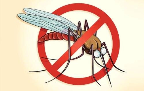 Pengendalian Malaria di Indonesia masih menghadapi tantangan, khususnya dalam hal pengobatan Malaria, antara lain: beragamnya tatalaksana kasus malaria di semua jenjang pelayanan kesehatan, dan timbulnya resistensi parasit Malaria terhadap anti malaria yang ada, seperti klorokuin dan sulfadoksin pirimetamin.