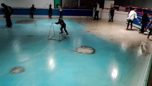 Gambar handout yang diambil pada bulan November 2016 dan dirilis pada 28 November, 2016, menunjukkan orang skating di gelanggang es dengan 5.000 ikan mati beku di dalam di taman hiburan Space World di Kitakyushu, Jepang. (AFP / Getty Images)