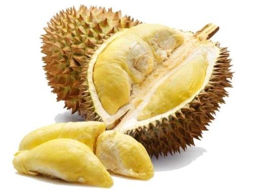 Buah durian yang ranum,kuning membuat orang segera memakannya. Namun, setelah itu habis manis sepah dibuang. Artinya, buah durian dimakan, kulitnya dicampakkan ke tong sampah. Padahal Kandungan zat pectin dalam kulit durian mencapai 2, 56 persen. Zat pectin sebenarnya tidak hanya ada dalam kulit buah durian. Sejumlah buah lainnya juga mengandung zat pectin seperti kulit buah pisang dan juga kulit buah mangga.