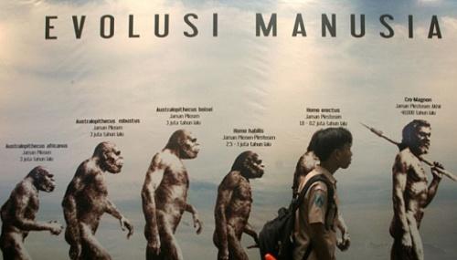 Ukuran otak manusia berkembang secara dramatis selama evolusi. Otak yang relatif besar dibanding anggota primata lain memberikan manusia kemampuan unik untuk menggunakan bahasa dan melakukan penghitungan yang rumit.